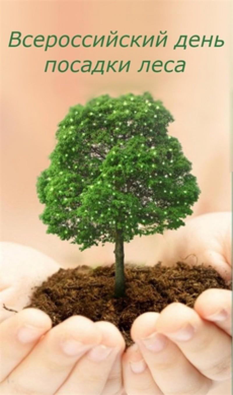 Всероссийский День посадки леса!