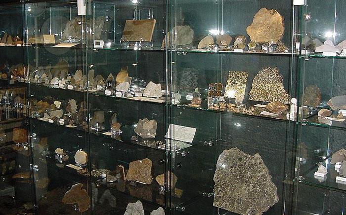 17. Коллекция метеоритов 13 лет собирал коллекцию метеоритов бывший инженер-электронщик Роб Эллиот и