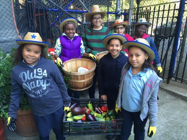 © Green Bronx Machine / facebook.com  Насегодняшний день благодаря этой организации нетолько