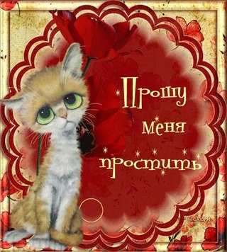 Прошу меня простить! Бело-рыжий котенок