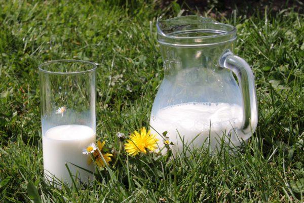 Россельхознадзор запрещает импорт сряда молочных предприятий Беларуси