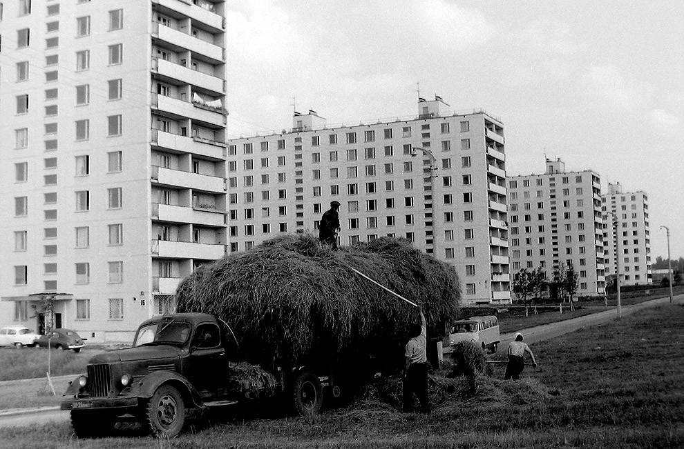 1. 1967 г.