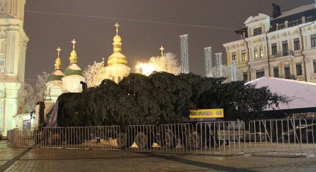 Встолицу Украинского государства привезли главную елку страны