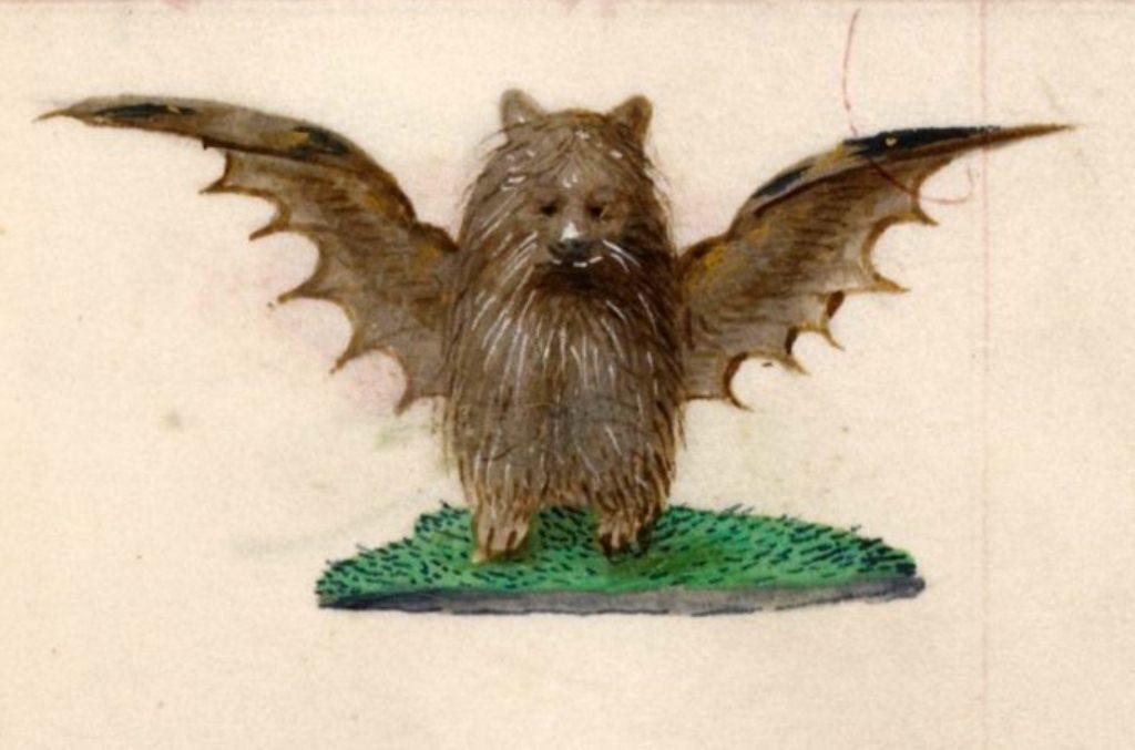 Bat-marmotta-Libro-dOre-di-Giovanna-di-Castiglia-1486-1506-BL-1024x782-768x587.jpg
