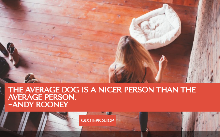 The average dog is a nicer person than the average person. ~Andy Rooney