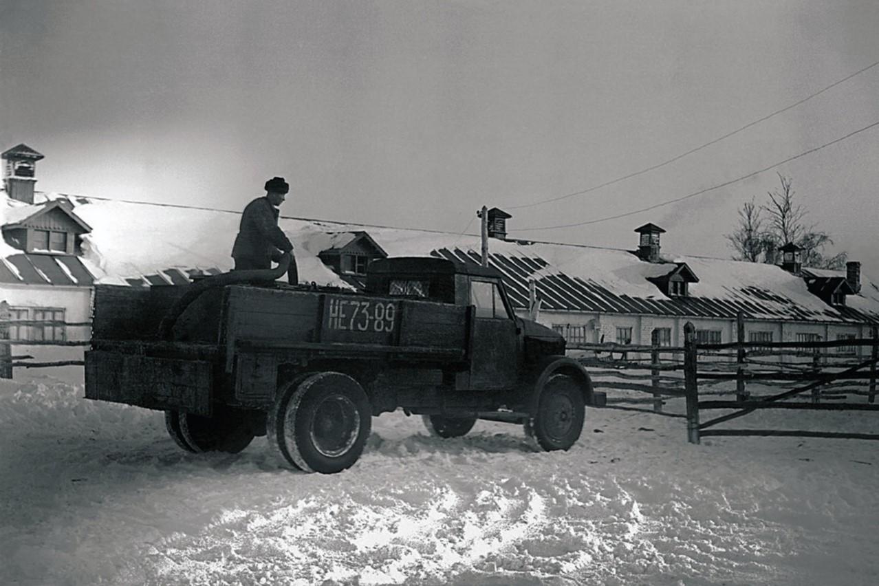 Молочная ферма совхоза (1955)