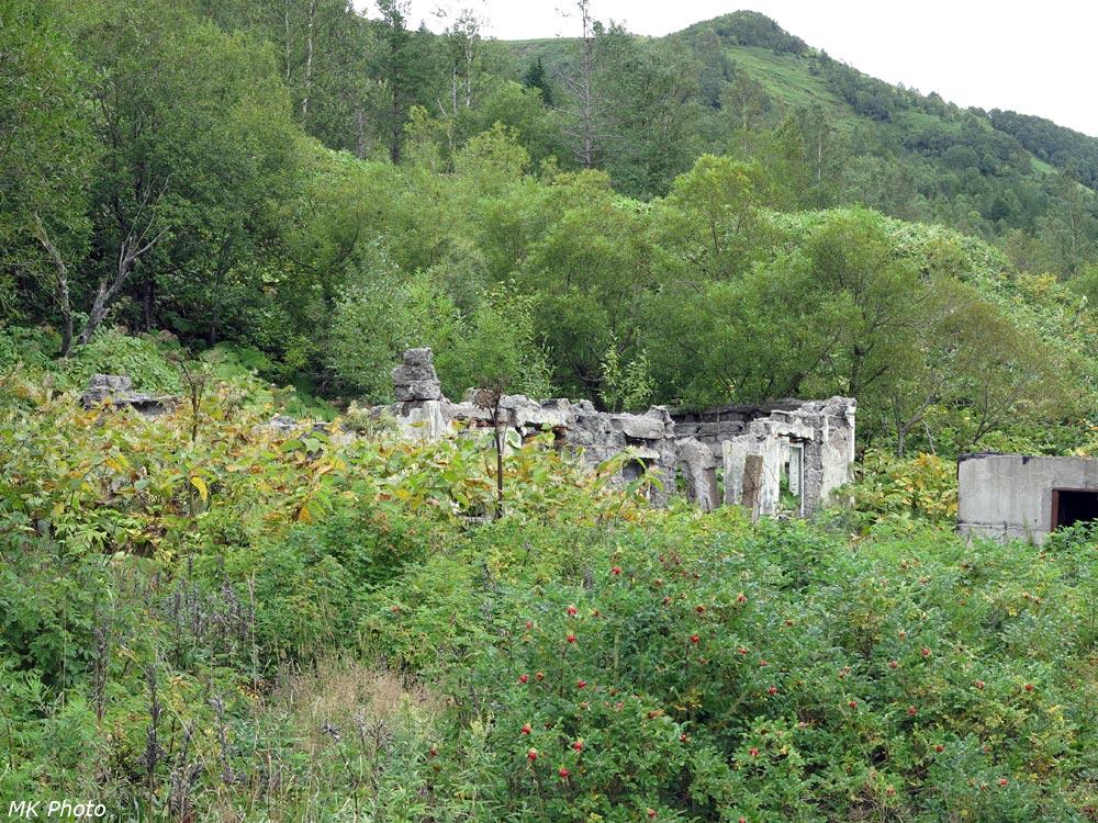 Развалины станции Камышовая-Сахалинская