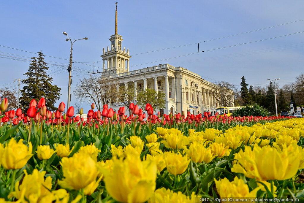 Площадь Ушакова таки имеет цветущий вид!