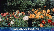 http//img-fotki.yandex.ru/get/170815/170664692.155/0_1856ff_bea0af9c_orig.png