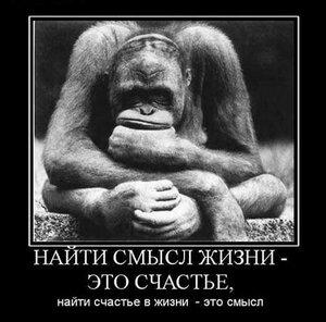 smysl_jizni_2.jpg