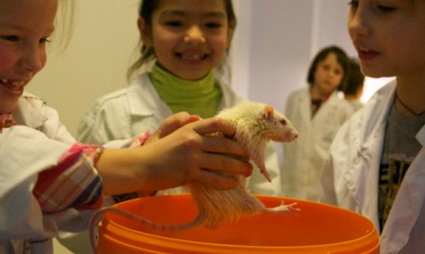 Политехнический музей в столице России оштрафовали за компанию детских кружков