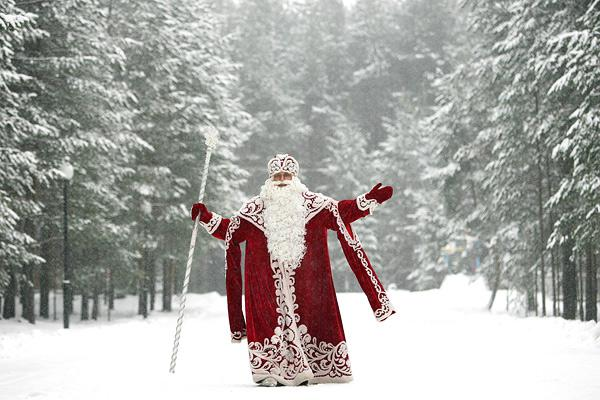 Физик пояснила, почему мыневидим Деда Мороза