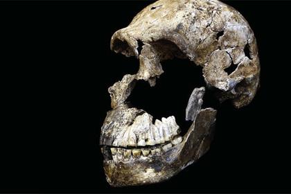 Ученые отыскали кладбище загадочных старинных людей HOMO NALEDI