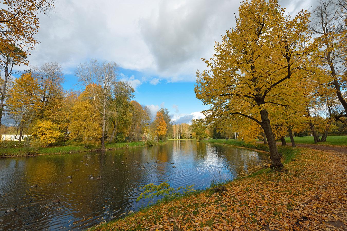 Фото 13. Осень в парке. 1/160, +1.0, 9.0, 15.