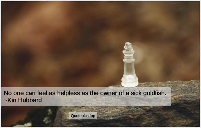 No one can feel as helpless as the owner of a sick goldfish. ~Kin Hubbard