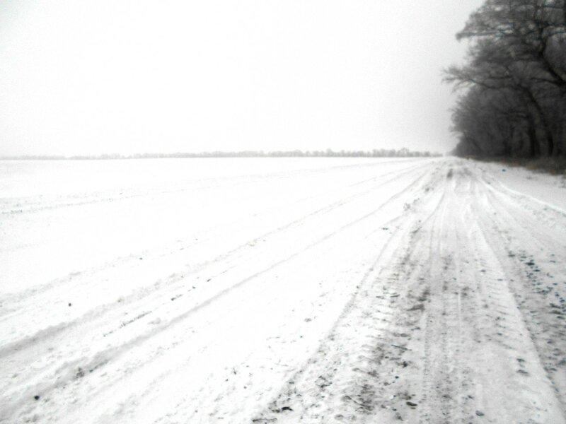 Снежно ... В походе декабрьском, снежно-туманном,