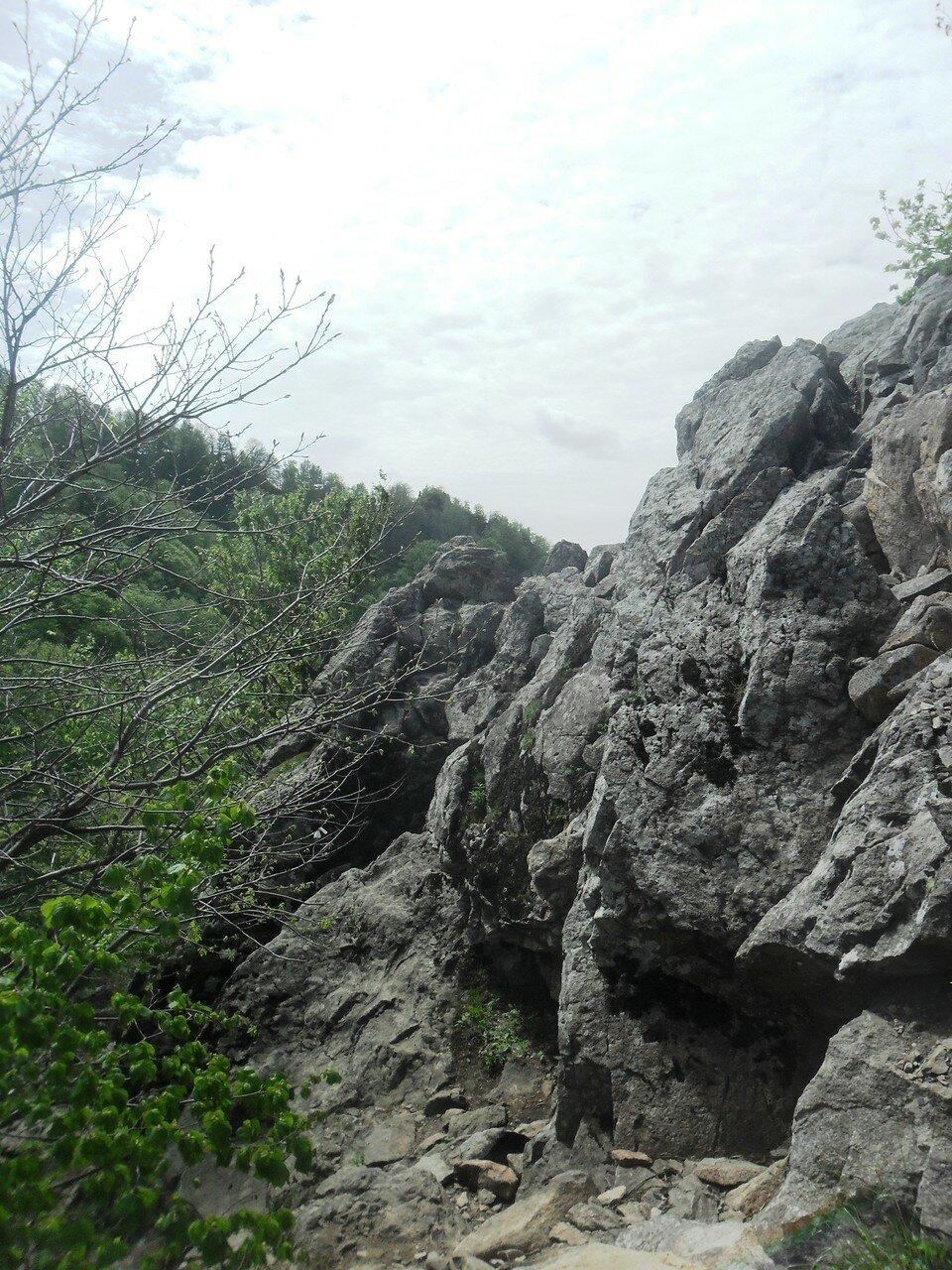 Тропка каменного участка ... SAM_6738.JPG