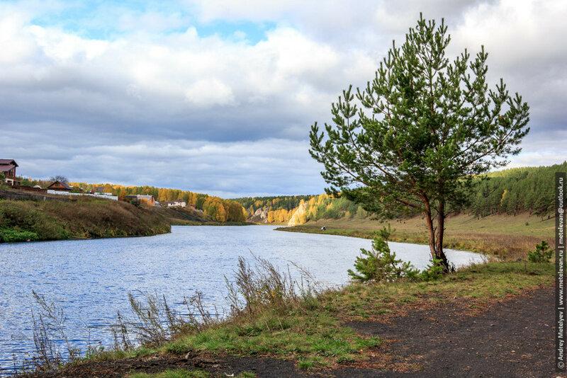 пейзажная фотография река и сосна