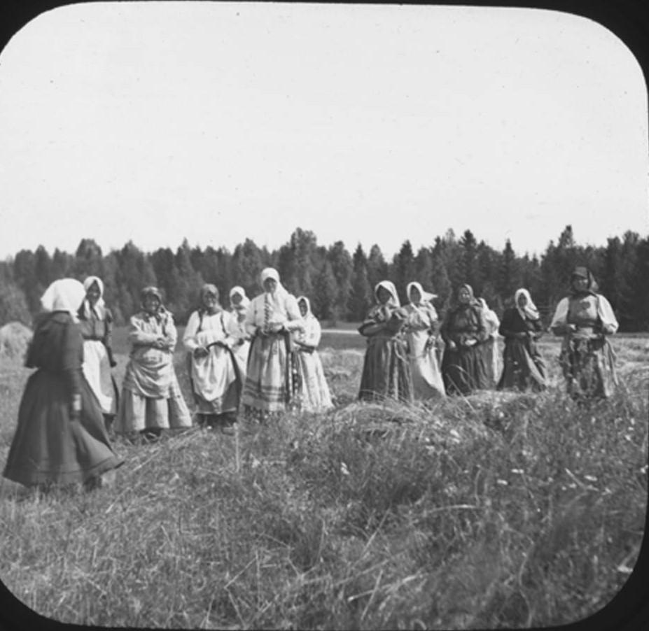 14. Группа женщин позирует для фотографии во время сбора урожая