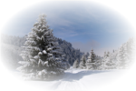 Winter Backgrounds #1 (136).png