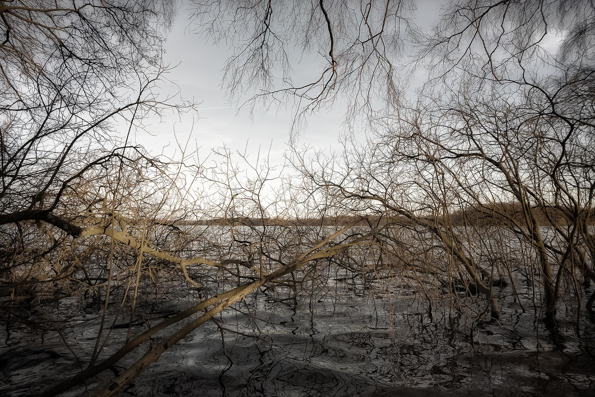 Природа Anders Stangl