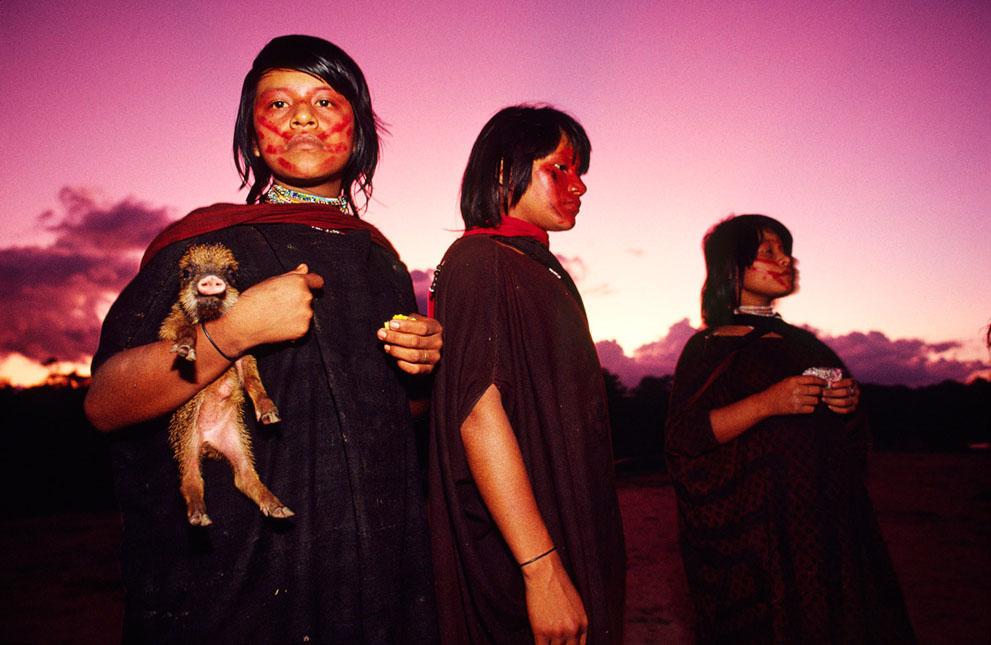 8. Девочки из племени ашанинка с осиротелым поросенком, которого они приручили. Охотники нашли у рек