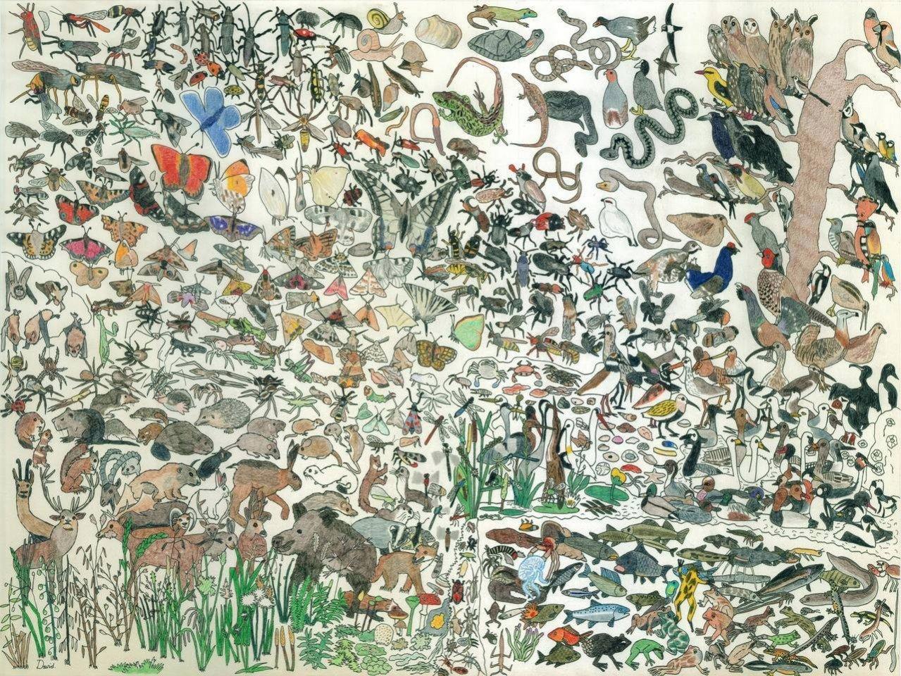 Искусство в себе: рисунки 10-летнего мальчика-аутиста Дэвида Барта