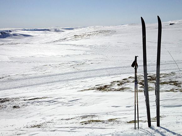 Власти Тронхейма хотят провести финал Кубка мира полыжным гонкам вместо Тюмени