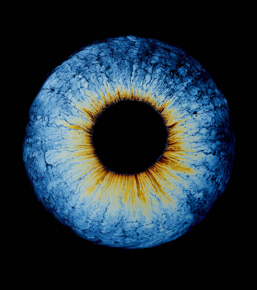 Fascinating Oil Exploration of Iridescence