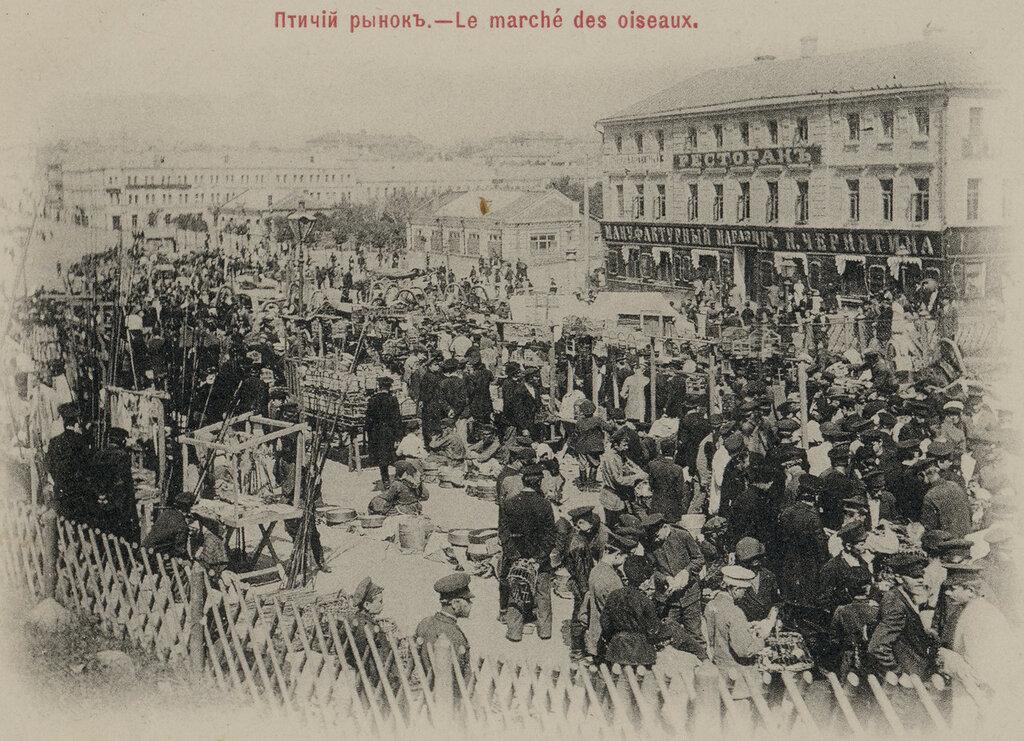 17016 Птичий рынок на Трубной 1910.jpg