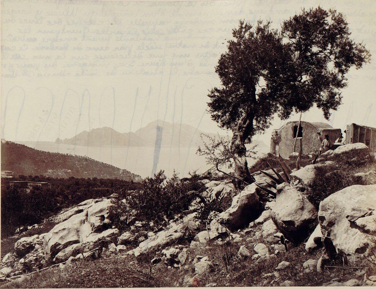 101. Окрестности Неаполя. Сорренто. Вид из Пунта-ди-Кампанеллы