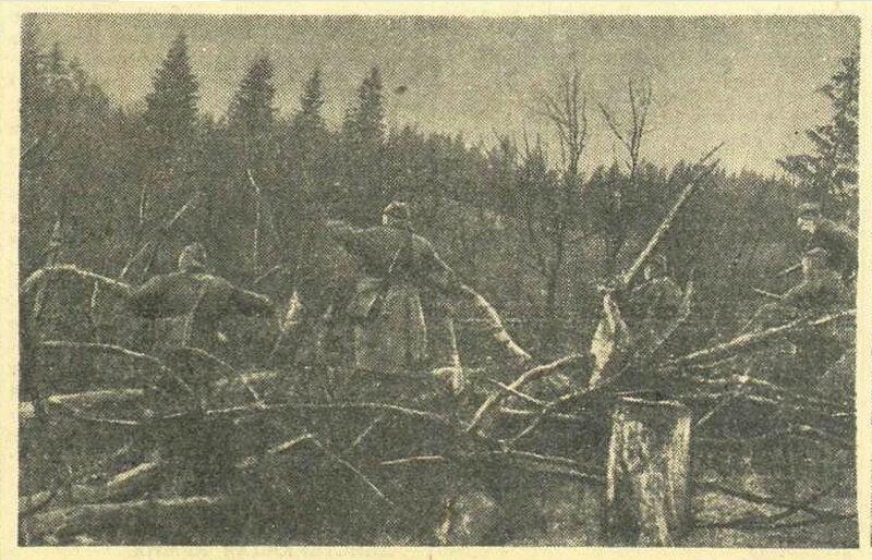 Красная звезда, 20 мая 1942 года