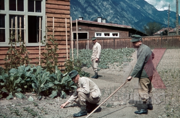 stock-photo-gardening-at-the-barracks-in-landeck-austria-1941-11355.jpg