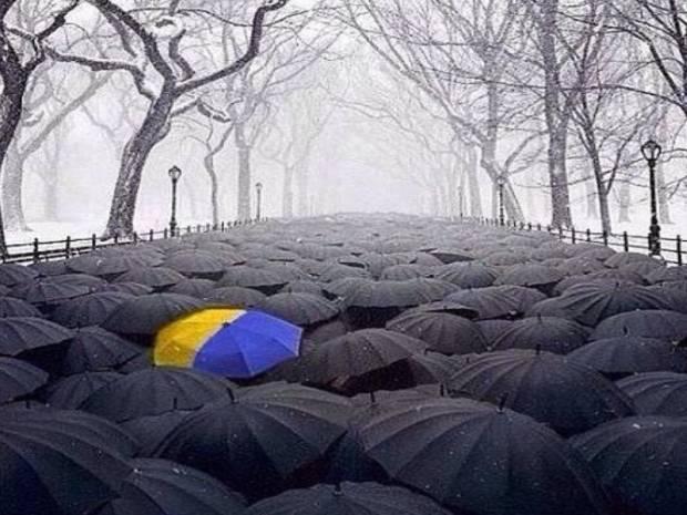 """""""Меня много кто спрашивает, что ты за эту Украину, глотку себе рвешь, за этого Порошенко, что для тебя сделала Украина"""", - блогер"""