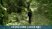 http//img-fotki.yandex.ru/get/171919/170664692.d7/0_174bff_65fba6dc_orig.png