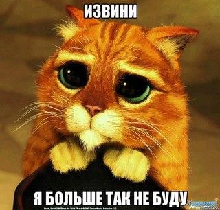 Извини! Я больше так не буду! Кот