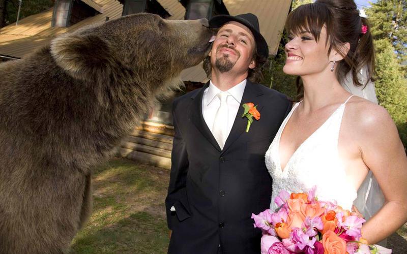 5. Медведь Не каждый решится на дружбу с медведем, а вот Кейси Андерсон решился. А началось все окол