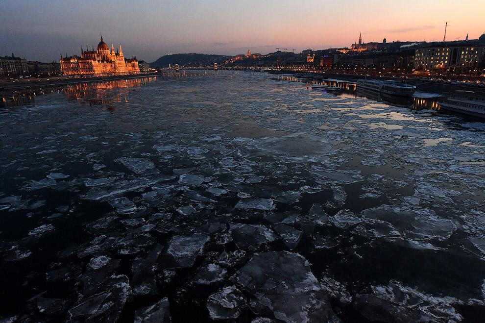 6. Лебеди на зимнем Дунае в Белграде, Сербия. (Фото Andrej Isakovic):