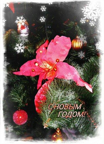 Всех поздравляю с наступающим Новым годом!!!!!