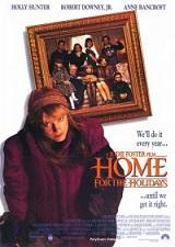 Домой на праздники / Home for the Holidays (1995/DVDRip)