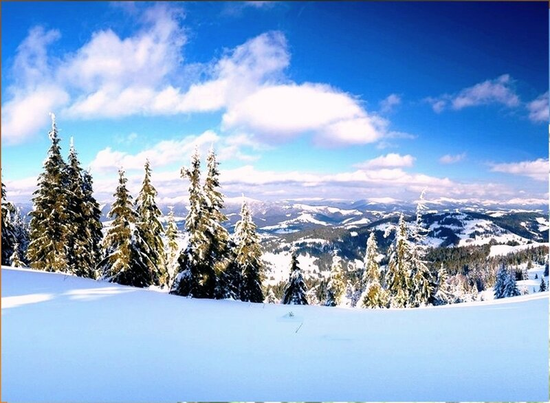 В горах новогодних (1).jpg