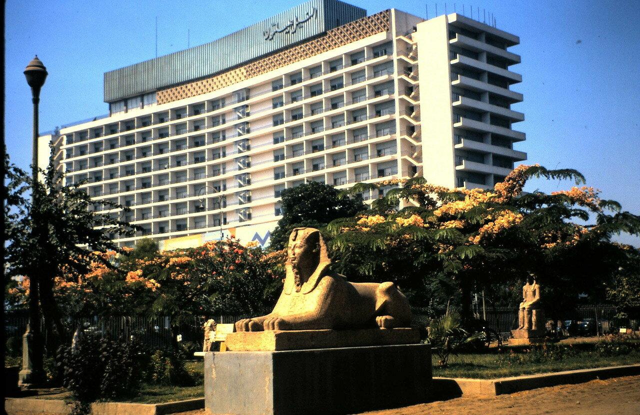 8 августа. Каир (Египет). Отель Хилтон