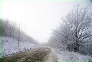 http://img-fotki.yandex.ru/get/172017/15842935.40c/0_f120c_6ea27335_orig.jpg