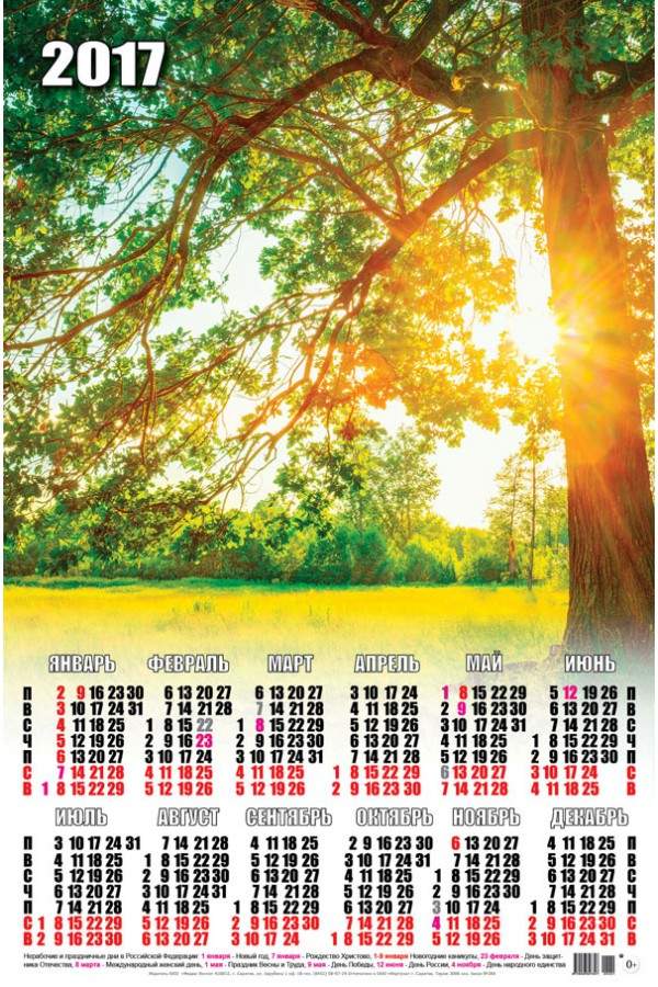 Календарь на 2017 г. Солнечный свет