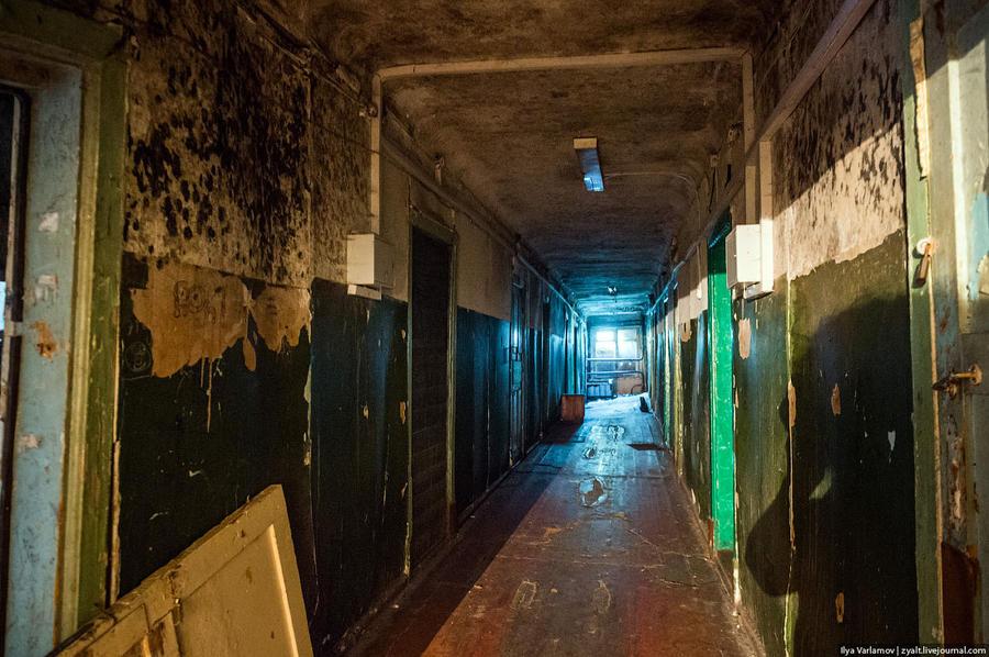 17. Черные пятна — это зловонный грибок, он поразил все стены. Иногда смотришь на потолок, и кажется