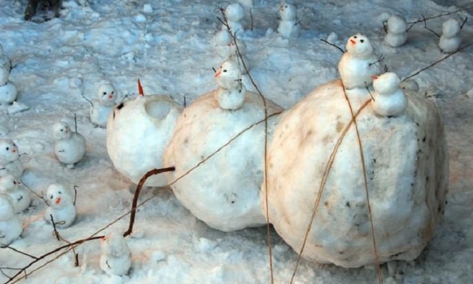 Лиливики схватили Снеговера.
