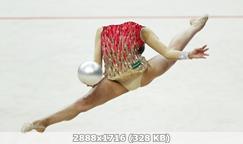http://img-fotki.yandex.ru/get/172017/340462013.20b/0_35ec28_8e54777e_orig.jpg