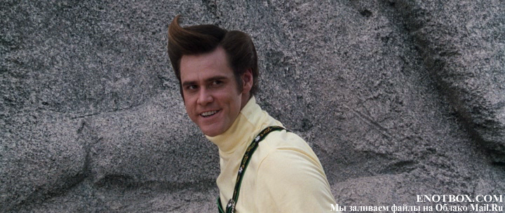 Ace Ventura When Nature Calls  1995  French Subtitles