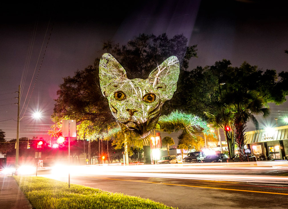 Frances projetou animais fashion nas areas urbanas de Orlando, Florida