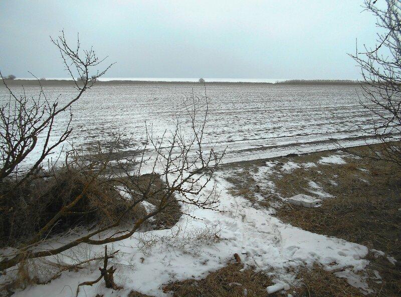 Снег, поле, Азовское побережье ... DSCN1119.JPG